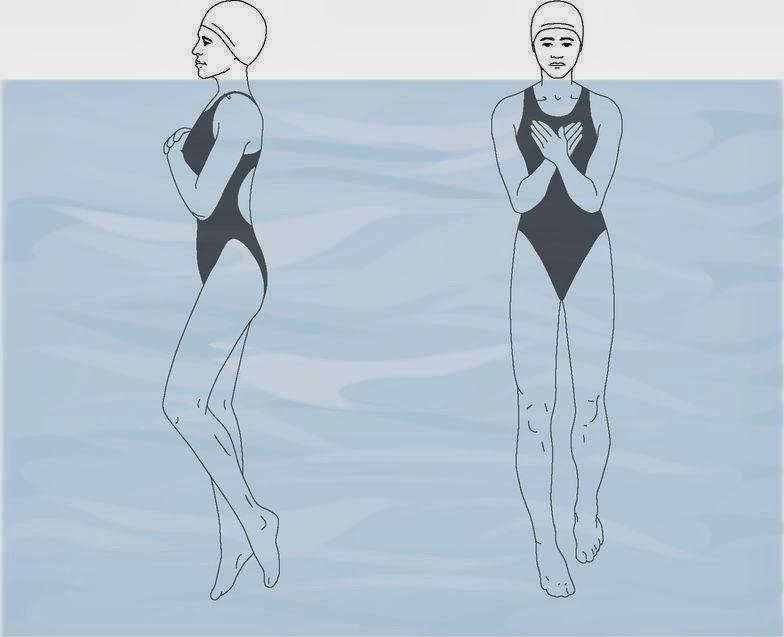 Uspravan rad nogu (plivačka vežba)